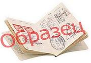 Образец визы для иностранца