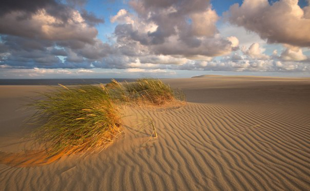 The Curonian Spit - photo of russia