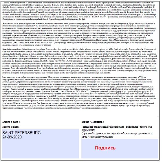 Заполнение анкеты  - 3 - вход в систему | получение визы в Италию онлайн