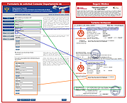 Consular formulario de solicitud de visa: cómo rellenar