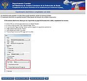 Consular formulario de solicitud de visa: impresión