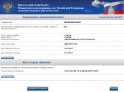 Консульская визовая анкета: проверка введенных данных