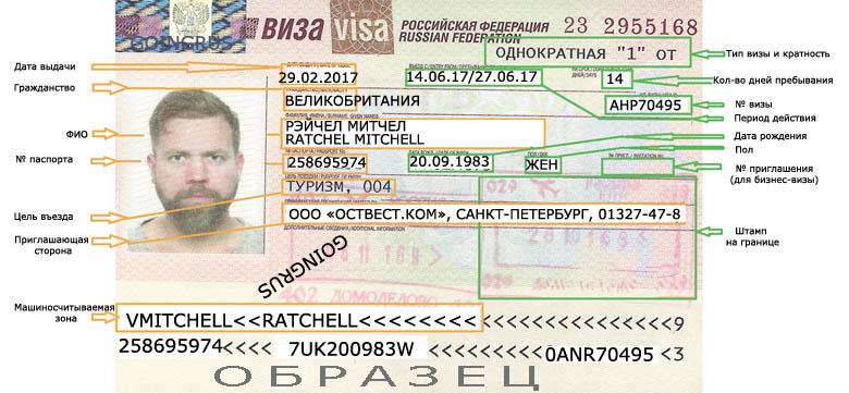 Как выбрать робочую визу